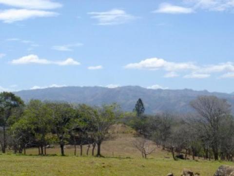 Turrúcares Alajuela Alajuela Costa Rica