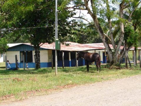 Buenavista Guatuso Alajuela Costa Rica